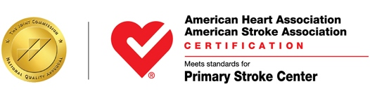 Stroke Certification Logo